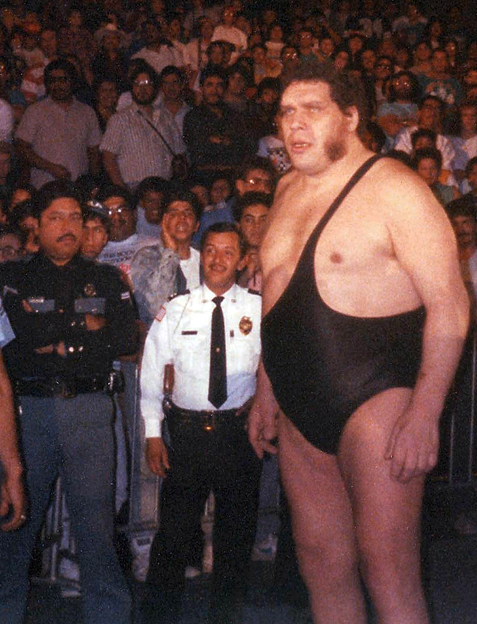 andre the giant 3
